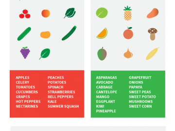 Is Your Produce Safe? A Guide to the Produce Section [Infographic]