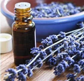 Why It's Important To Utilize Essential Oils In Your Beauty  Regimen
