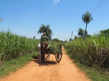 From the Organic Bath Co. Team: Why Fair Trade is Important to Us