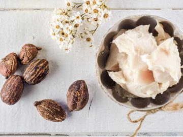 Ingredient Spotlight: Shea Butter
